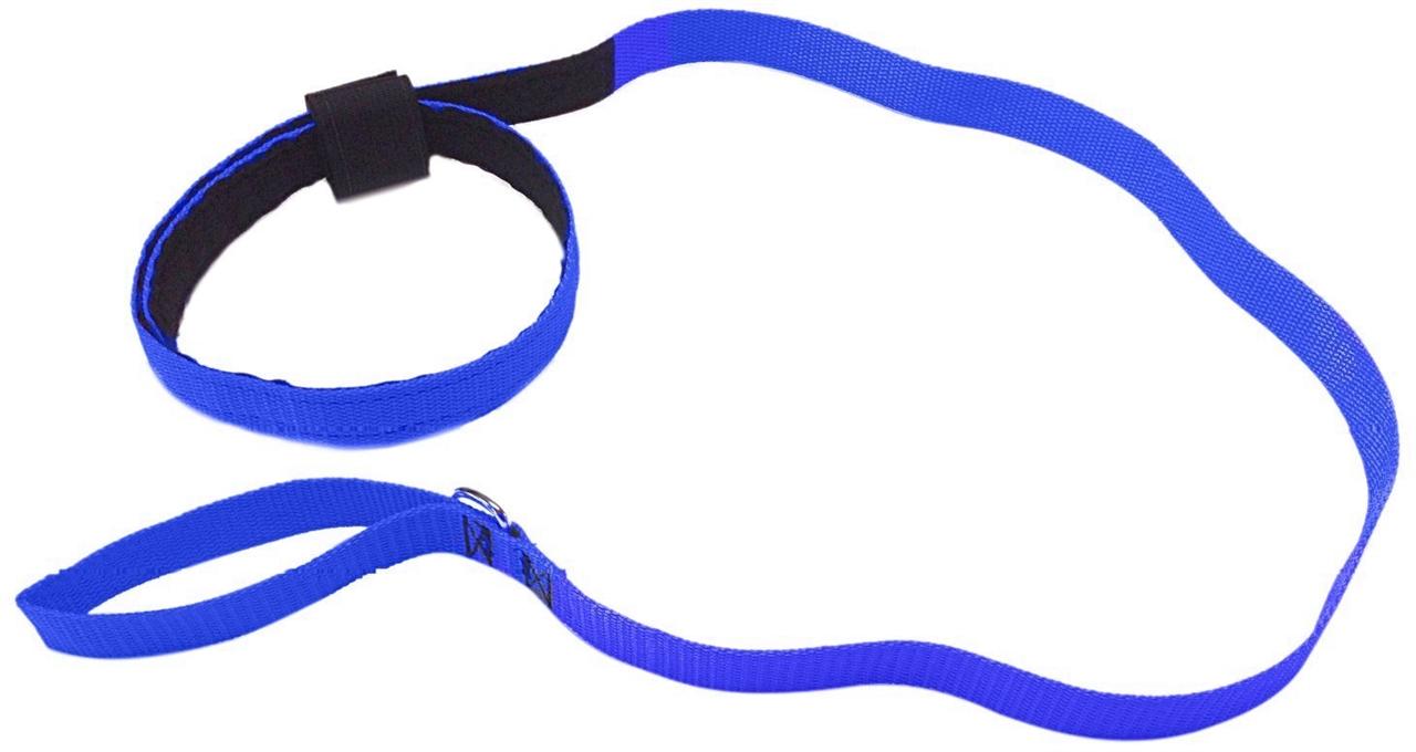 1280x680 Paw Clipart Dog Lead