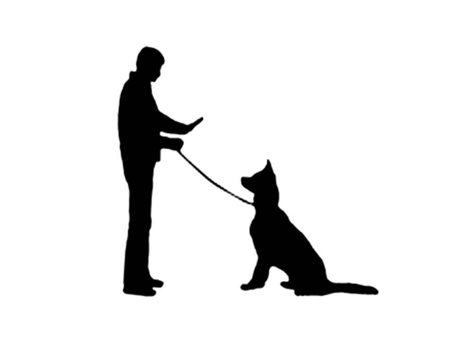 960x720 Pet Clipart Dog Training