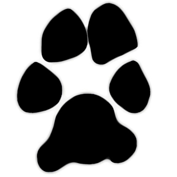 576x576 Dog Paw Paw Print With Bones Border Design Clipart Image