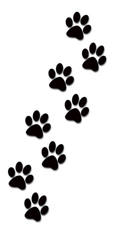 474x908 Paw Clipart Dog And Cat