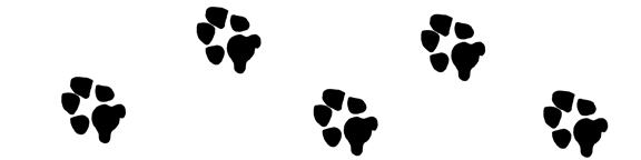 576x144 Paw Prints Dog Paw Print Clip Art Graphics For Projects Dog