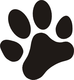 250x271 Paw Clipart Real Dog