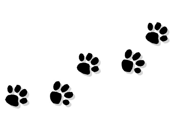 d8619c44845a Dog Paw Prints | Free download best Dog Paw Prints on ClipArtMag.com