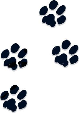 268x380 Dog Paw Print Clip Art