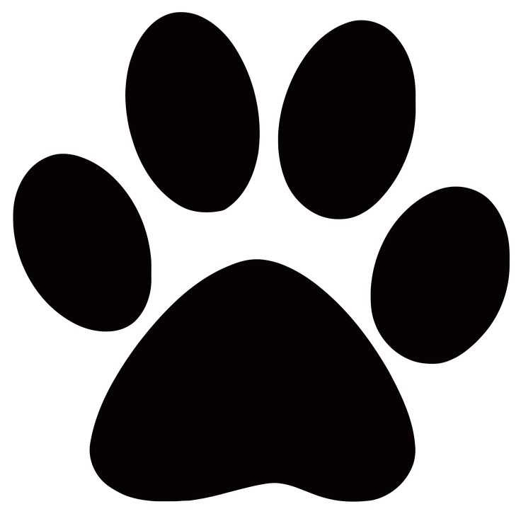 736x736 Dog Paw Clip Art Images