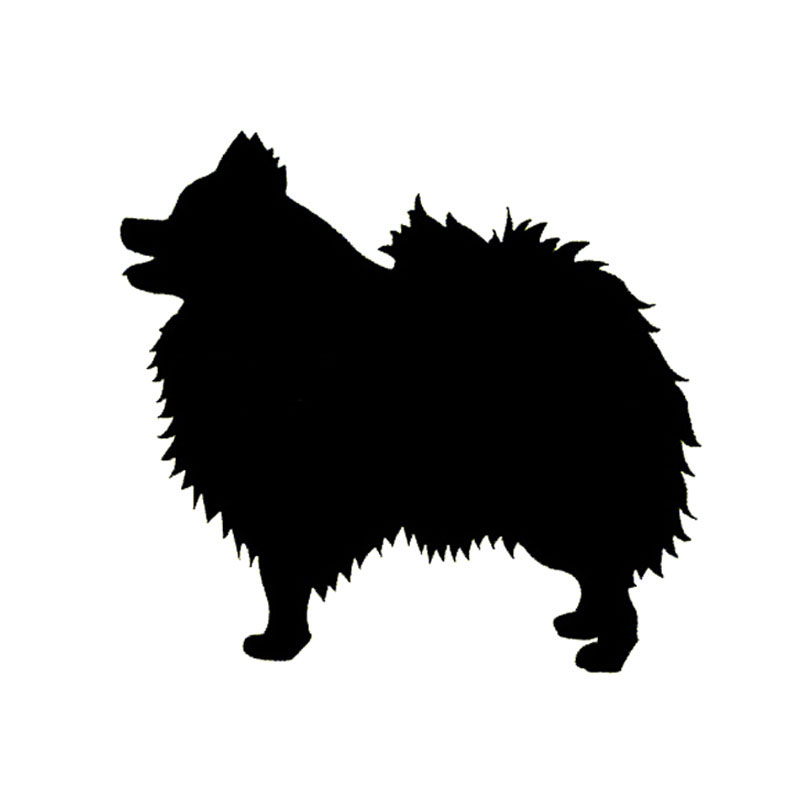 Collection Of Pomeranian Clipart Free Download Best