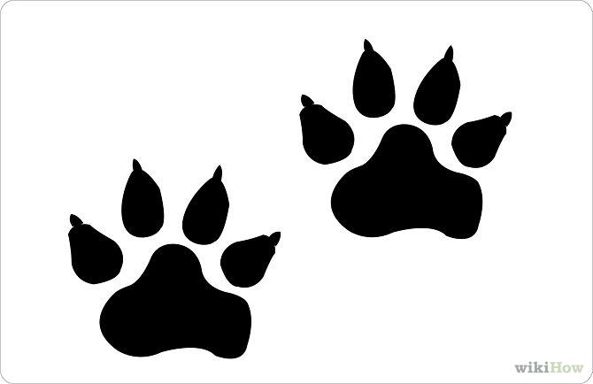 670x434 Dog Paw Print