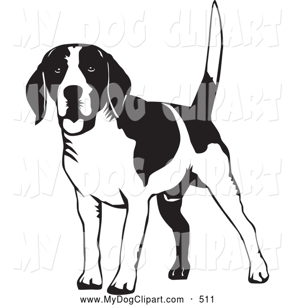 600x620 Clip Art Of A Cute Happy Beagle Dog Wagging His Tail, On A White