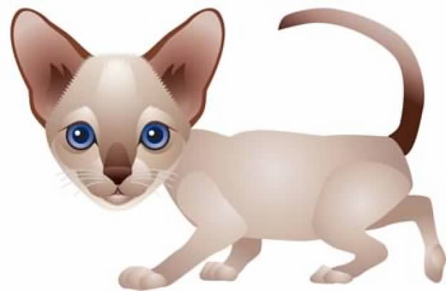 626x409 Cat Clip Art Like Dog Walking In Side View Download Free Animal
