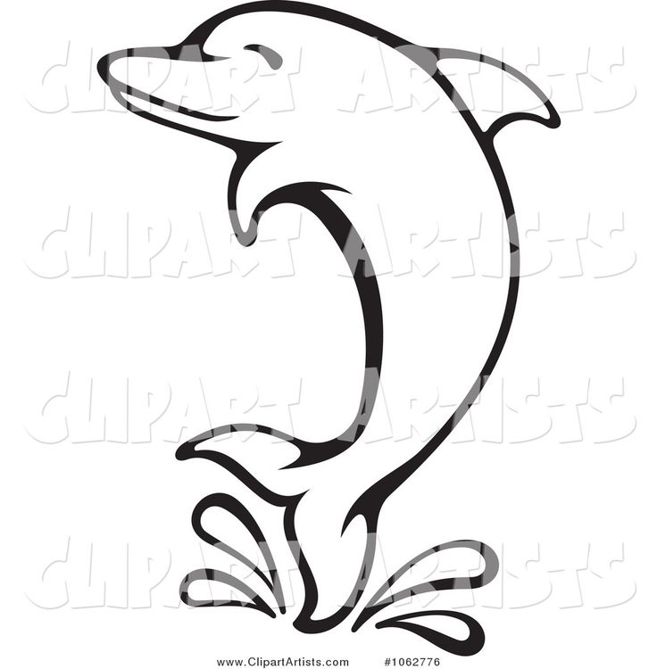 736x750 Free Dolphin Clipart Black And White