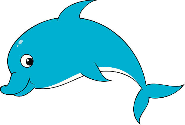612x416 Dolphins Clipart Funny