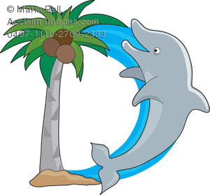 300x279 Letter D Is for Dolphin