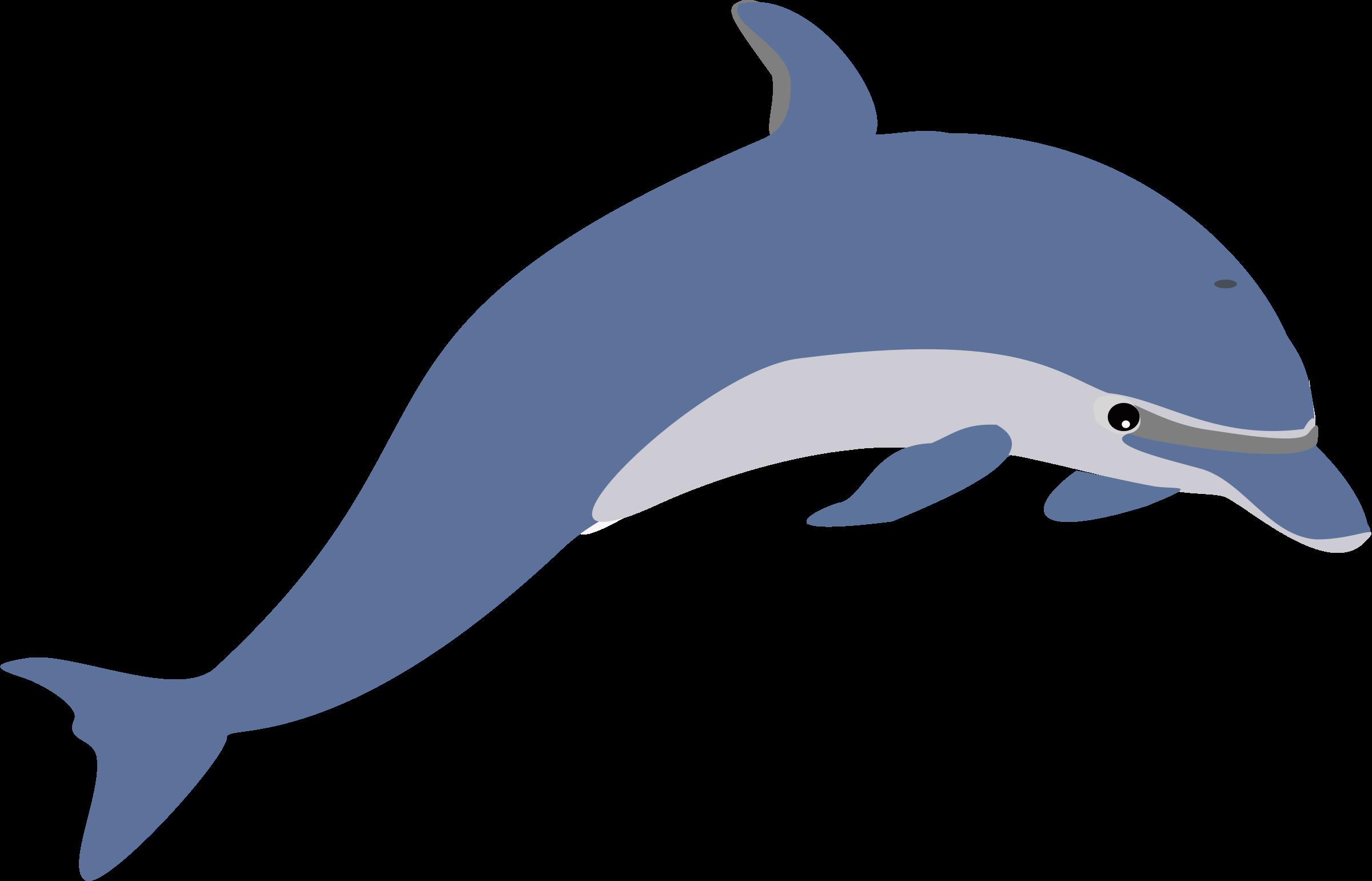 2400x1541 Top 80 Dolphin Clip Art