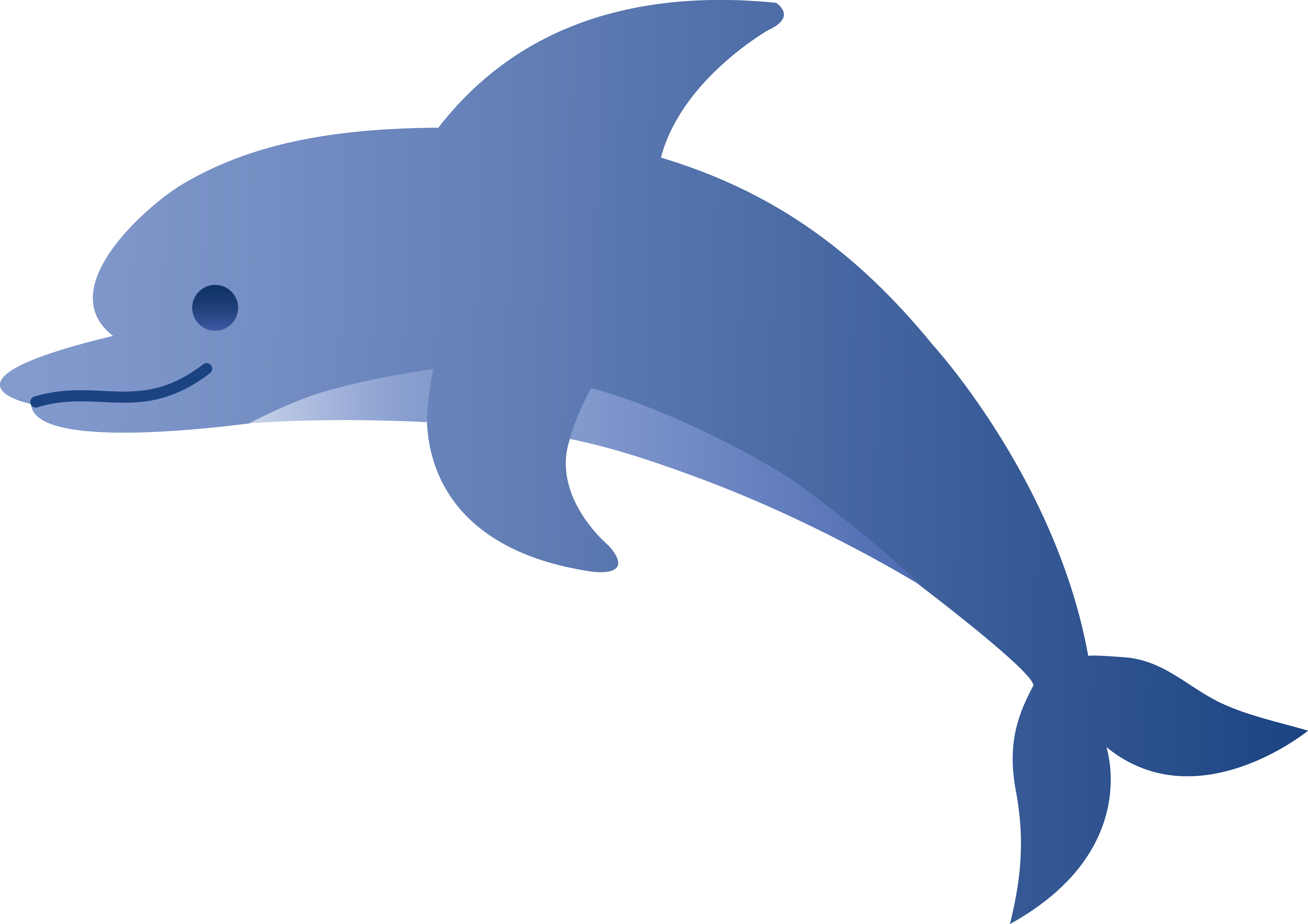 6883x4862 Cute Blue Dolphin
