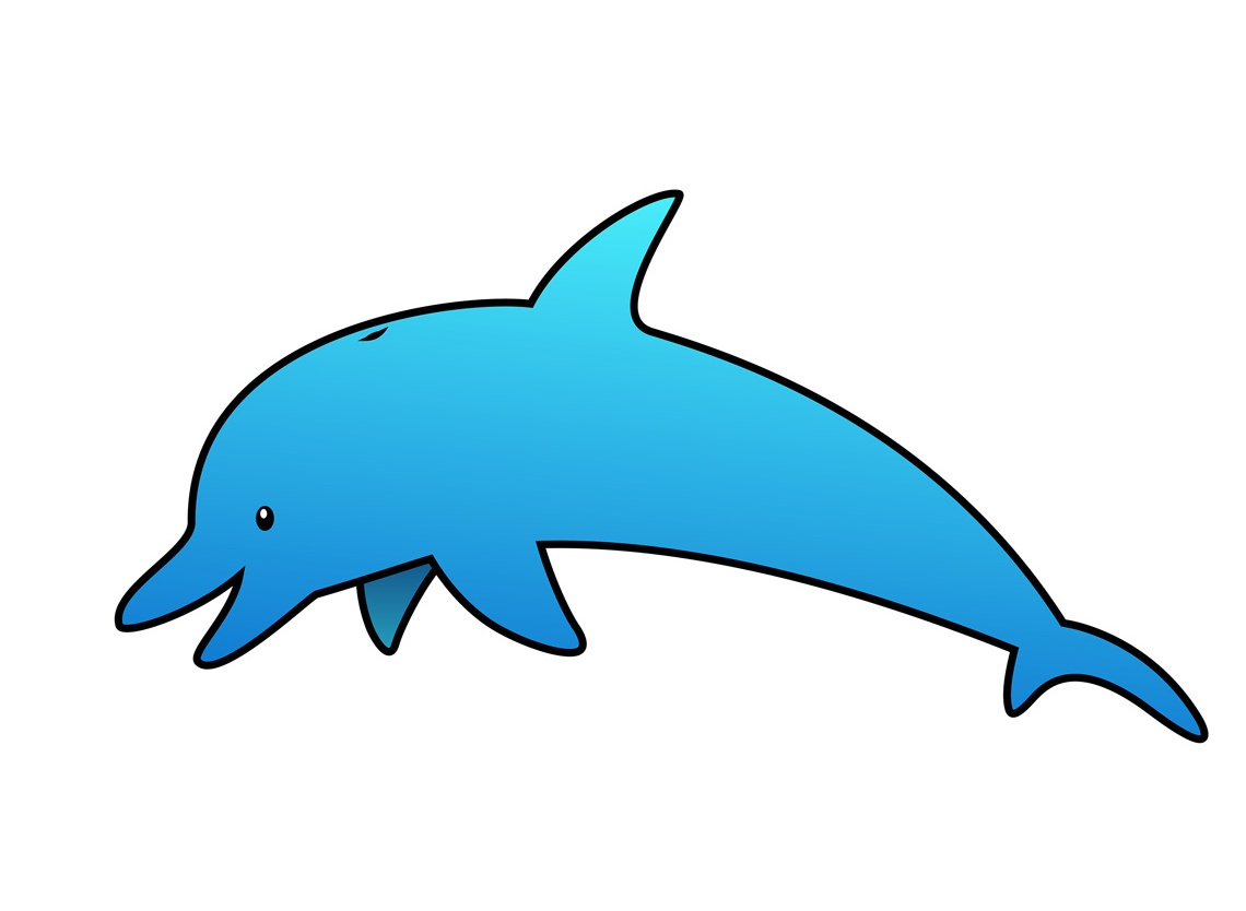 1140x834 Baby Dolphin Clipart