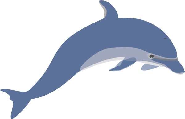 600x386 Dolphin Clip Art Free Vector In Open Office Drawing Svg ( Svg