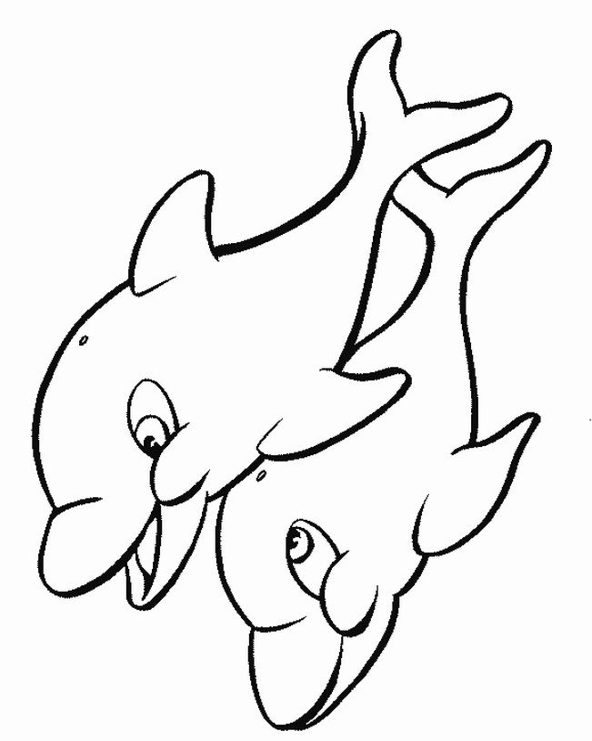 651x814 104 Best Dolphins Images Coloring, Diy And Cartoons