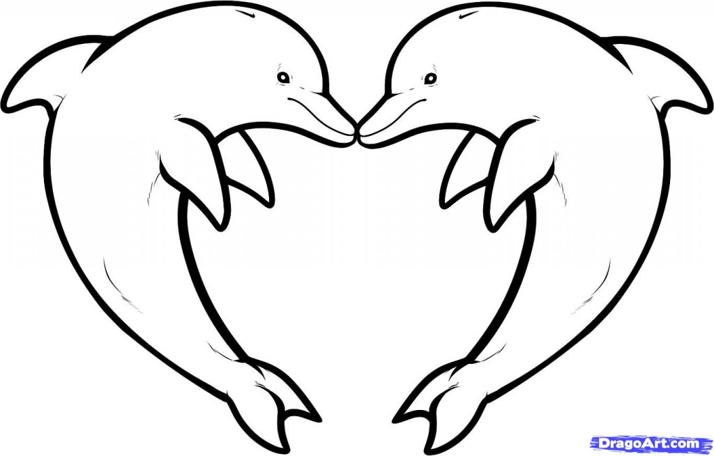 1024x654 Dolphin Line Art Collection