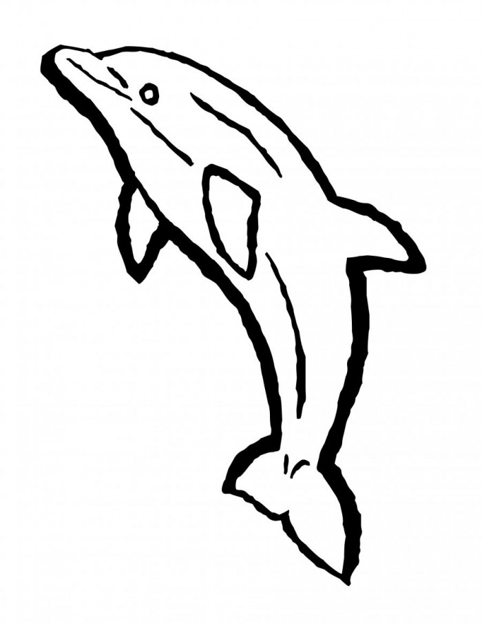 700x905 Spinner Dolphin Clipart Simple