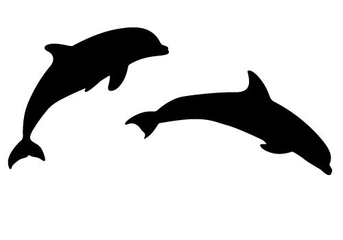 500x350 Bottlenose Dolphin Clipart Two