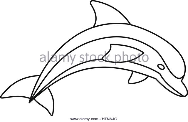 640x414 Dolphin Pool Black And White Stock Photos Amp Images