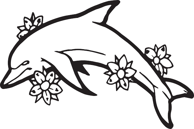 640x425 Best Dolphin Outline