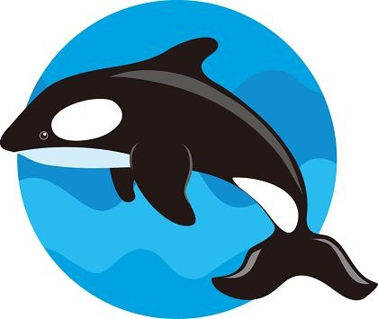 420x355 Free Clip Art Whales Clipart