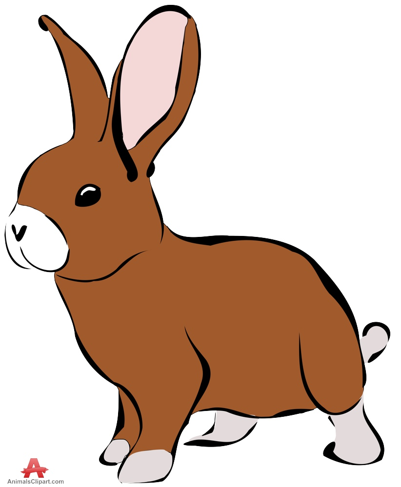 822x999 Rabbit Clipart In Colors Free Clipart Design Download