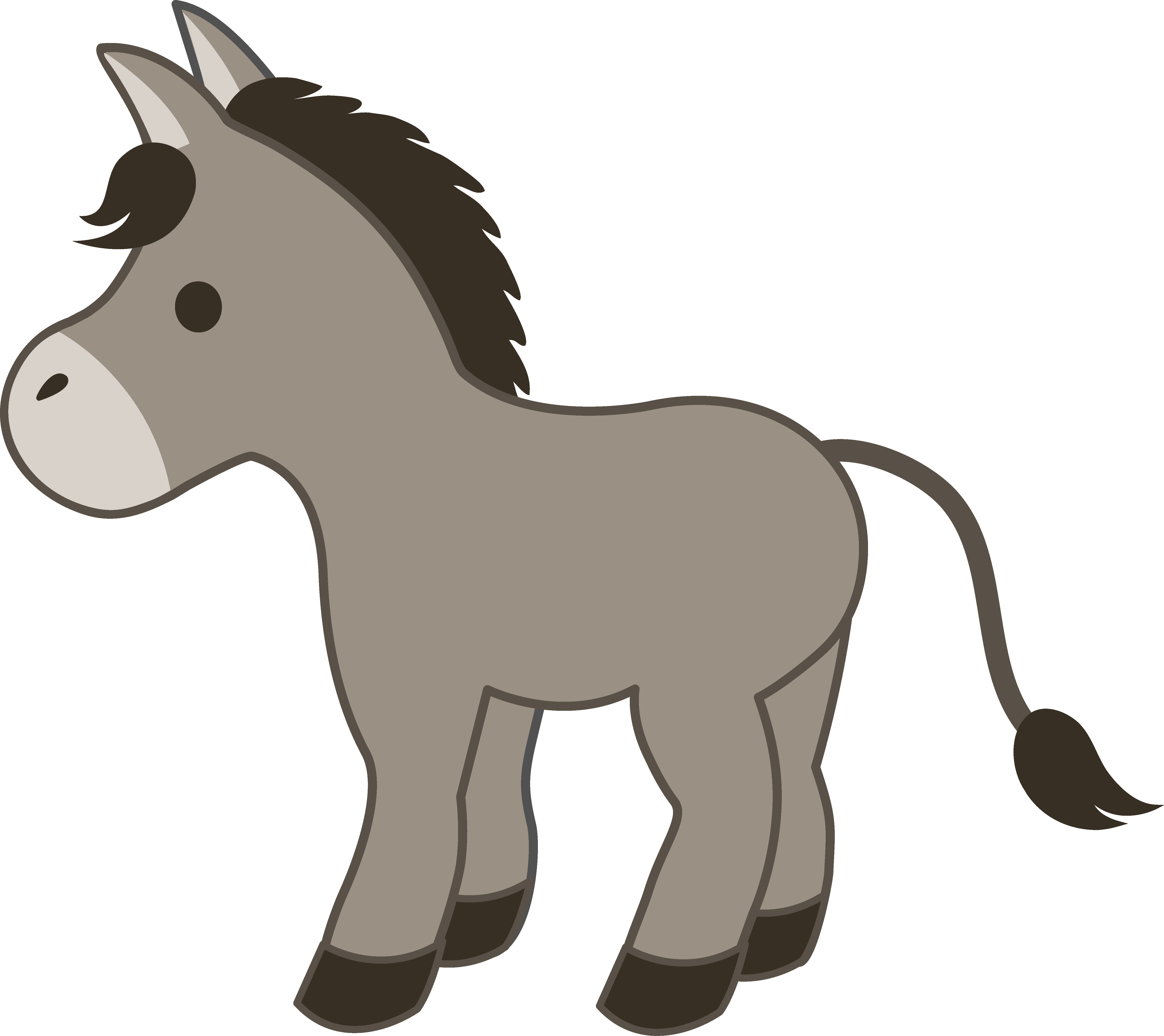 5360x4769 Cute Gray Donkey