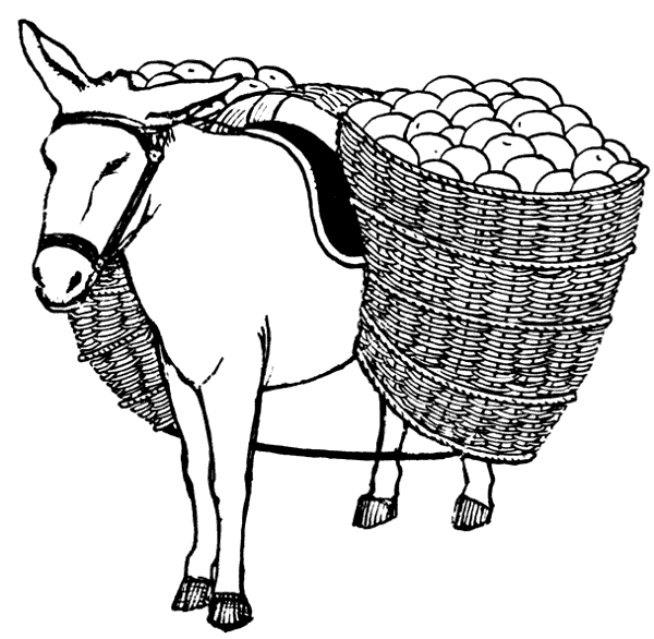 600x586 Free Donkey Clipart 1 Page Of Public Domain Clip Art 2 Image