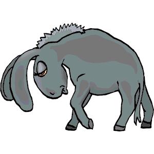 300x300 Donkey
