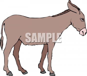 350x305 Royalty Free Donkey Clip Art, Farm Animal Clipart