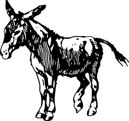 425x399 Donkey 2 Free Vector 4vector