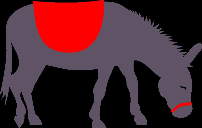 800x506 Donkey Clipart Free Co 2 Image
