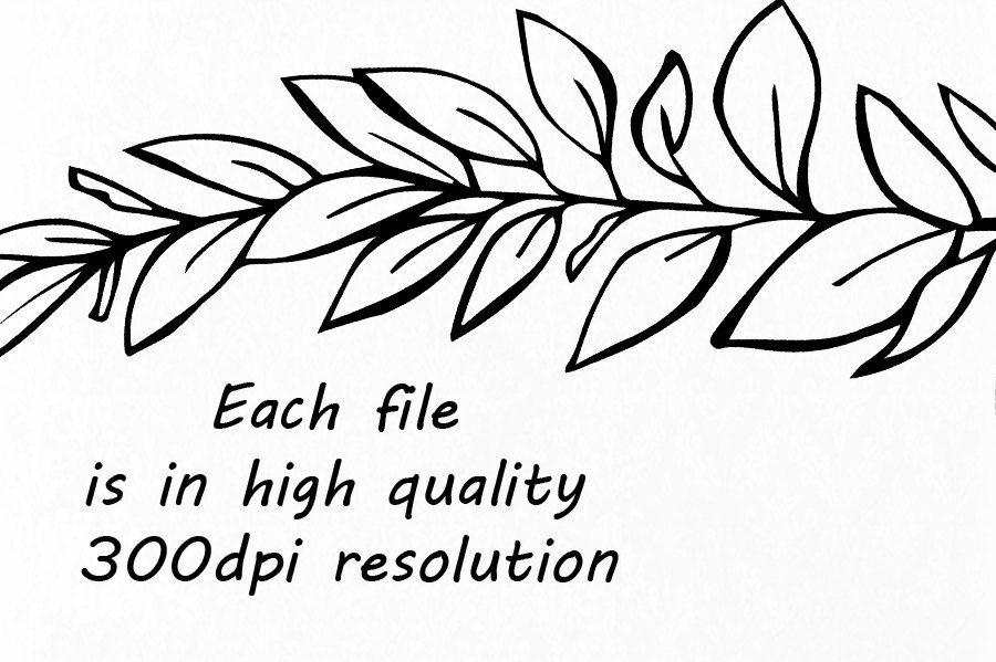 900x599 Doodle Climbing Plant Clipart, Hand Drawn Herbs Clipart, Leaves