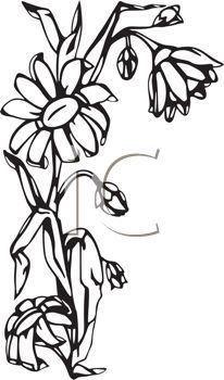 206x350 Sunflower Clip Art Designs, Clipart Amp Silhouette Things