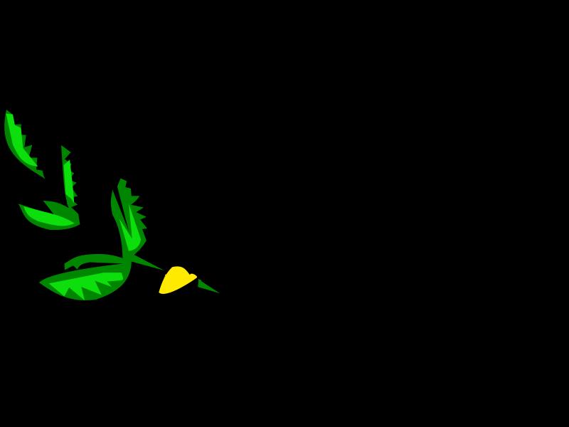 800x600 Dove Clip Art