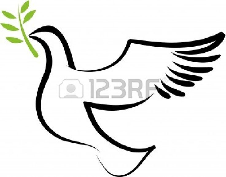 736x578 Best Dove With Olive Branch Ideas Dove
