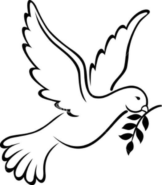526x600 Black And White Dove Clipart