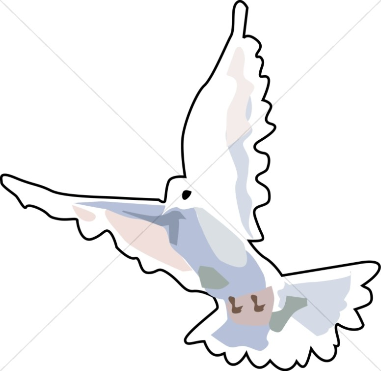 776x754 White Dove Graphic Dove Clipart
