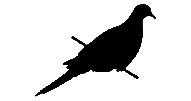 648x343 Mourning Dove Clipart Flight Silhouette
