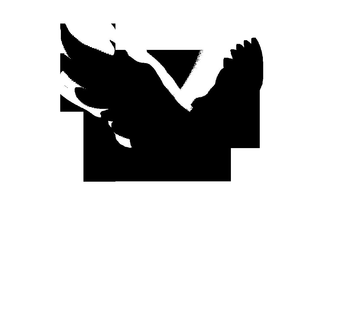 1138x988 Turtle Dove Clipart Flight Silhouette