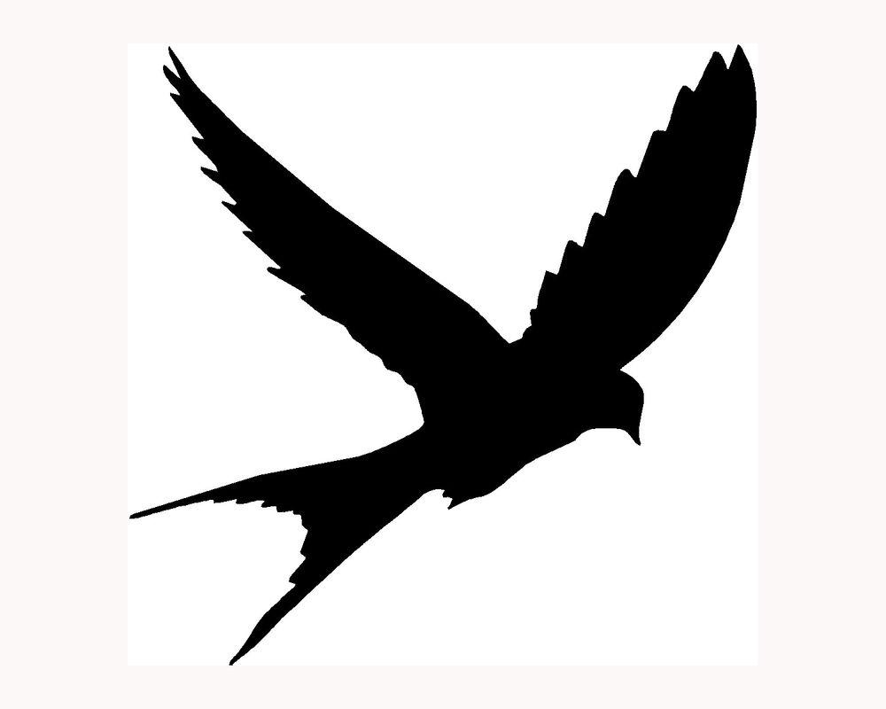 1000x800 Best Flying Bird Silhouette Ideas 3 Birds