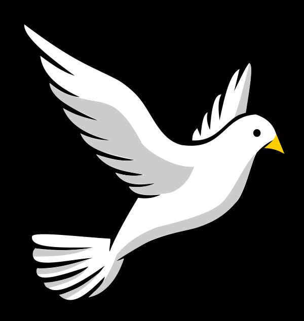 600x634 Dove Clipart Transparent No Background Free