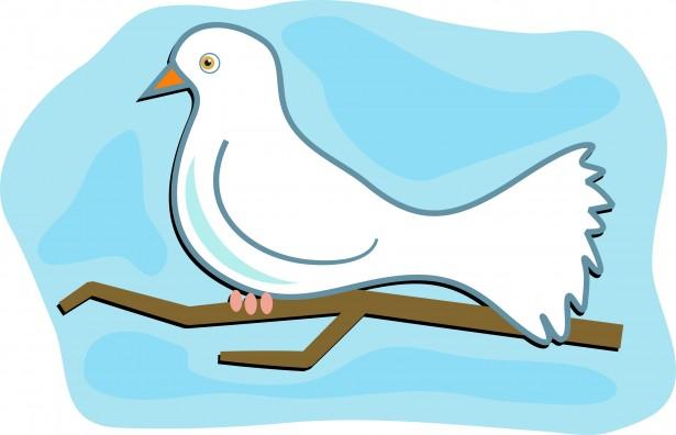 615x396 White Dove Clip Art Free Stock Photo