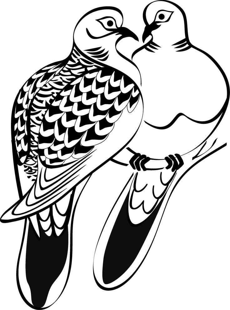Dove Line Art