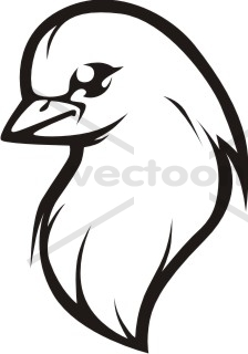 224x320 Dove In Black And White Outline