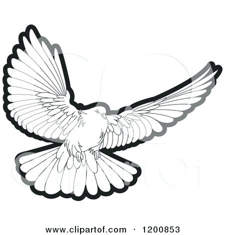 450x470 Doves Clipart White Dove Wedding Bell Pencil And In Color Clipart