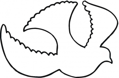 465x304 Best Dove Outline