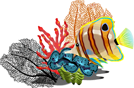 446x293 Image Of School Of Fish Clipart